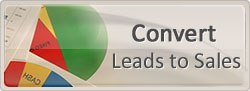 Convert Sales to Leads